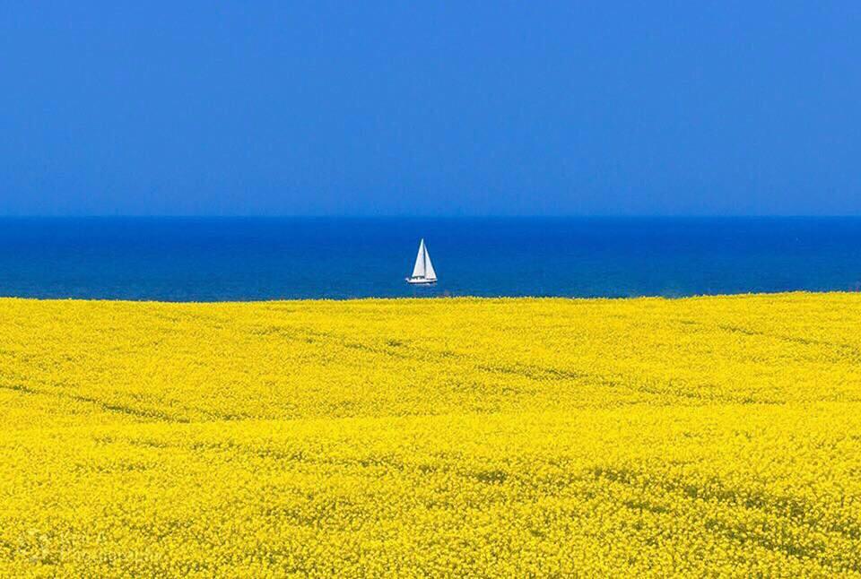 Thơ viết ở biển