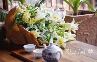 Hoa loa kèn nhuộm nỗi nhớ tháng Tư