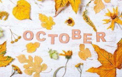 Em Có Về Hà Nội Tháng 10 Không?