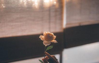 Chỉ là em nhớ anh