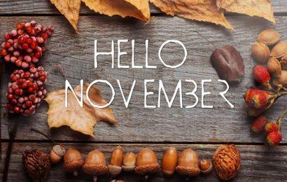 Ta nằm trên năm tháng, còn hoài niệm nằm trên… tháng 11
