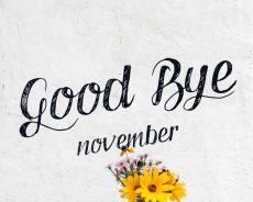 Nỗi nhớ tháng 11